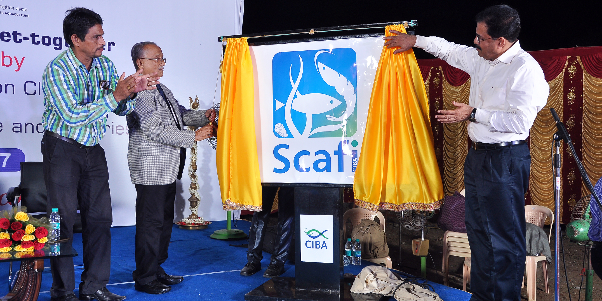 Dr. E.G. Silas, Founder Director CIBA & Former V.C, KAU unveiling the logo SCAFi on August 26, 2017 at Headquarters, Chennai