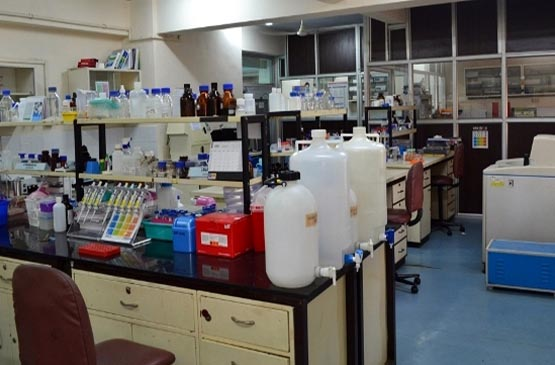 Lab_I_Molecular_biology