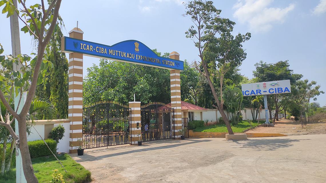 muttukadu-experimental-station