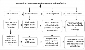 Assessment of perceived farming risks, communication of risk management practices, and evaluation of their efficiency in Pacific white shrimp (Penaeus vannamei) farming—a survey-based cross-sectional study